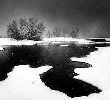 Snoasis by Bob Larson