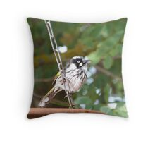 Juvenile New Holland Honeyeater loves the water too. Adelaide Hills.. Throw Pillow