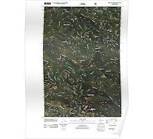 USGS Topo Map Washington State WA Bare Mountain 20110503 TM Poster