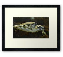 """""""Endangered"""" Framed Print"""