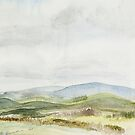 View of the Cheviots from Thrunton Wood by Gillian Cross