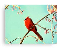 Cardinal & Cherry Blossoms Metal Print