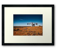 Outback clothesline Framed Print