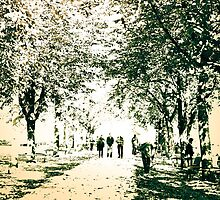 Strolling thru the park by wulfman65