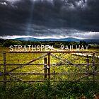 Strathspey Railway by wulfman65