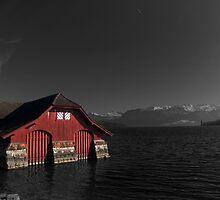 Switzerland's cutouts by Gianluca Laurentini