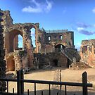 Kenilworth Castle ( 5 ) by Larry Lingard/Davis