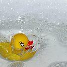 Rubber duck by PhotoTamara