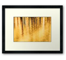 THE FOREST II Framed Print