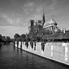 Notre Dame de Paris by Nick Coates