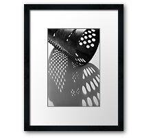 grater Framed Print