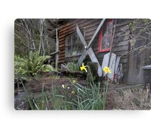 Denny's Workshop - Melaleuca, Tasmania Metal Print