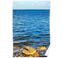 Biscayne Bay Shore Poster