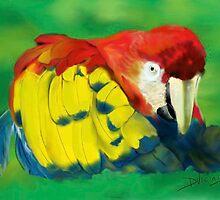 Dreaming of Costa Rica by Deborah Vicino