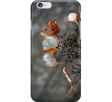 Dry flower iPhone case iPhone Case/Skin