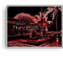 Picasa 3.9 upgrade Canvas Print