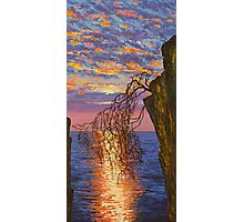Sunset on cliff Photographic Print