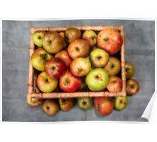 Windfall Apples. Poster