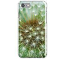 Dandelion Fairies iPhone Case/Skin