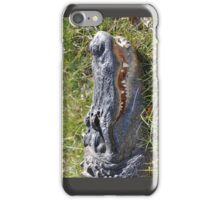 Aligator's Smile iPhone Case/Skin