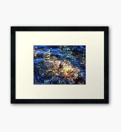 Penetrating the Depths (Hall Lake) Framed Print