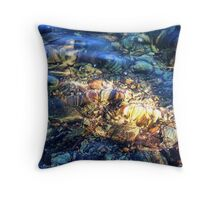 Penetrating the Depths (Hall Lake) Throw Pillow