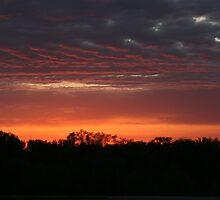 Sunset by ffuller