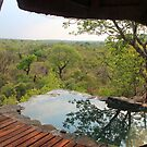 The African bush from the top of Leopard hills by jozi1