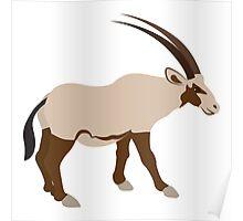 Oryx animal Poster