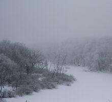 winter by ffuller