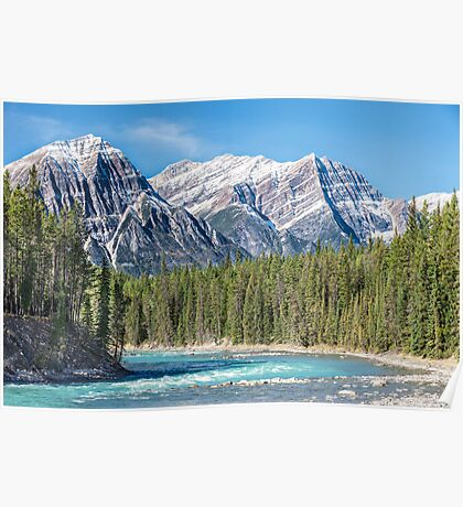 Athabasca River and the Canadian Rockies Poster