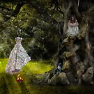 Fairy Godmother Arrives by Dianne English