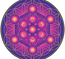 Metatron's Cube on Flower of Life by GalacticMantra