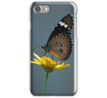 Monarch iPhone Case/Skin