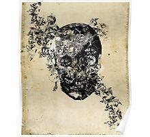 skull crystallisation Poster