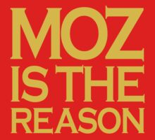 Moz is The Reason by personalized