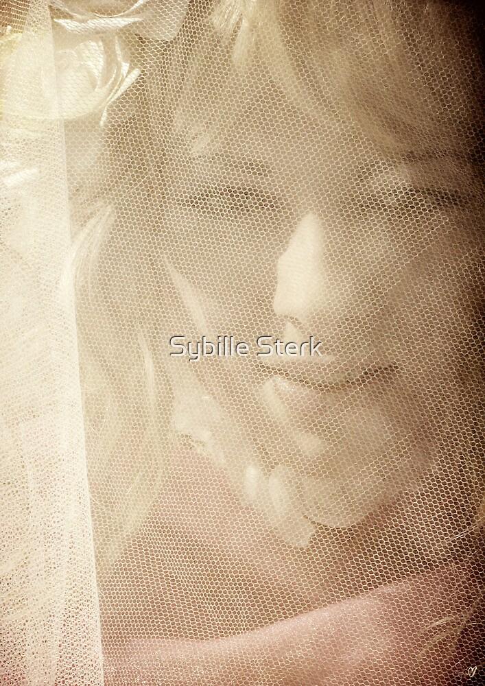 Cinderella by Sybille Sterk