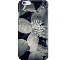 Clematis in Monochrome iPhone Case/Skin
