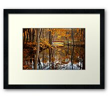 Beautiful Reflections Framed Print
