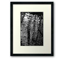 Wetland Reflections Framed Print