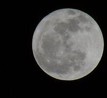 Grey Moon by heatherjstewart
