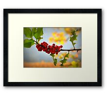 """ Holly Blue, Green & Gold "" Framed Print"