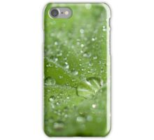Lady's Mantle iPhone Case/Skin