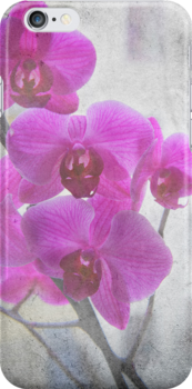 Pink Orchid by Madeleine Forsberg