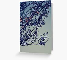 spring is coming.. Greeting Card