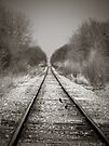 Rural Railroad Tracks by Marcia Rubin