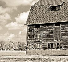 The Barn by Marcia Rubin