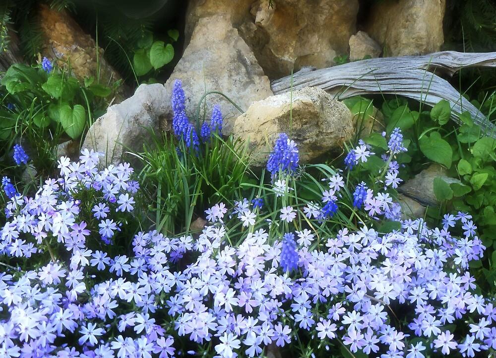 March Blues by Nadya Johnson