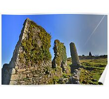 Cornwall: Mine Ruins on Caradon Hill Poster