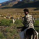 Shepherd at Black Mountain by Jens Helmstedt